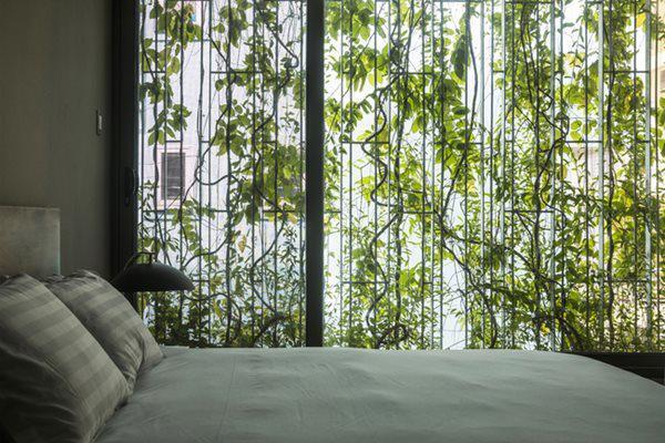 Không gian thoải mái bên trong phòng ngủ của ngôi nhà.