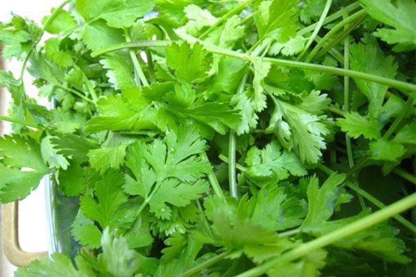 Bước 2: Làm nước sốt và trộn salad