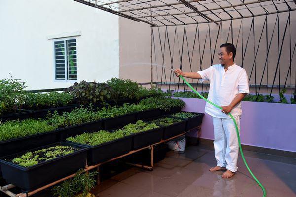 Trên sân thượng Hồng Tơ trồng rau, trái cây vừa để thư giãn vừa làm nguồn thực phẩm sạch cho gia đình.
