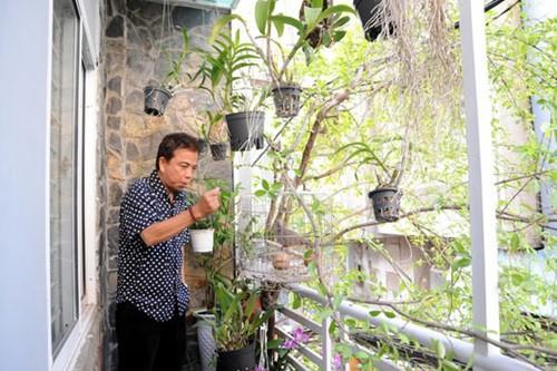Sân thượng cùng vườn rau và cây cảnh được Hồng Tơ chăm chút rất kỹ lưỡng