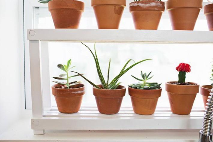 4. Đặt 1 chiếc giá để đồ nhỏ cùng tông với màu cửa sổ để trồng những bồn hoa nhỏ tạo cảm giác sạch sẽ, tươi mát hơn cho nhà bếp. Thông thường cách này chỉ áp dụng với những cửa sổ là dạng cửa trượt, cửa chớp.