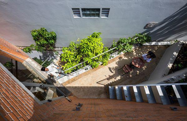 12 bậc thang lớn để trồng cây xanh được lồng ghép xen kẽ quanh ngôi nhà, chạy thẳng lên tầng thượng.