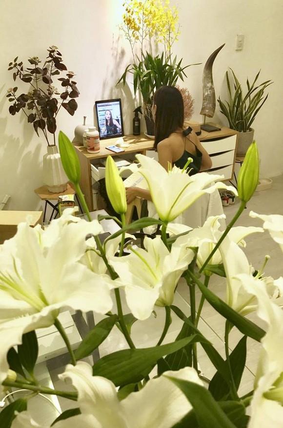 Phòng làm việc cũng ngập trong hoa và cây
