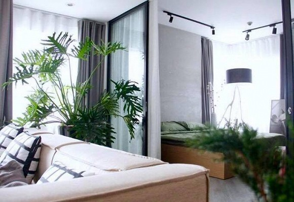 Căn chung cư rộng rãi có đủ không gian để Đỗ An có thể trưng bày các loại cây cảnh mà anh yêu thích.