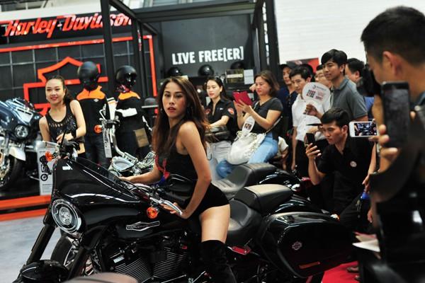 Những chiếc Harley Davidson hầm hố cùng những người mẫu đầy cá tính.