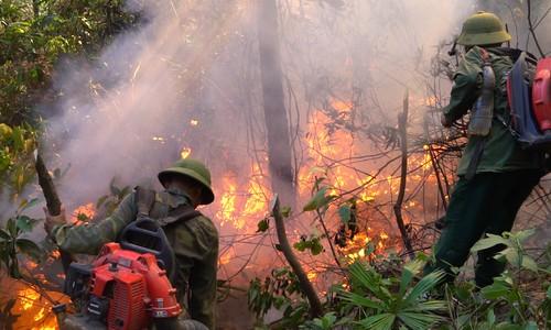 Đám cháy rừng 2 ngày ở Hà Tĩnh chưa được dập tắt  - Ảnh 1.