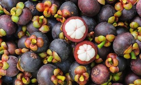Trái cây từ Thái Lan nhập vào Việt Nam cao hơn hai lần so với hàng Trung Quốc. Ảnh: Infonet.
