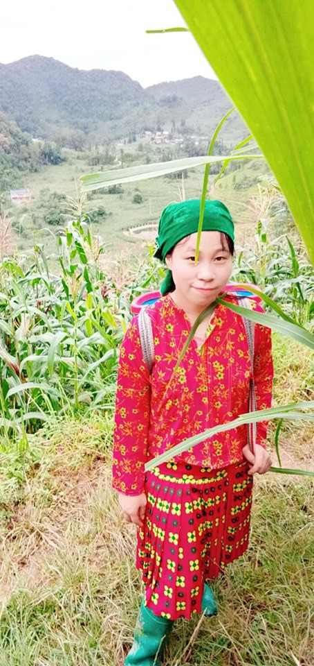 Một ngày vất vả kiếm tiền đi học của nữ sinh nghèo người Hmông được tuyển thẳng vào đại học - Ảnh 15.