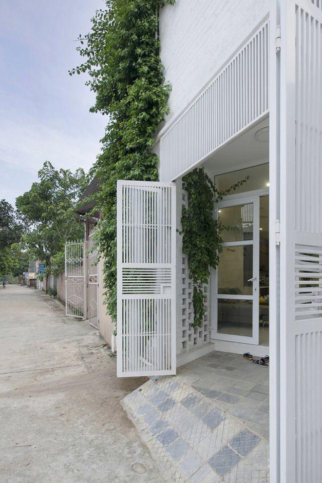 Phần tường nhà phía trước được làm bằng gạch thông gió để tạo khoảng trống tại những góc nghiêng và hẹp nhất, trồng cây vào những khe hổng đó để tạo sự riêng tư cho gia chủ.