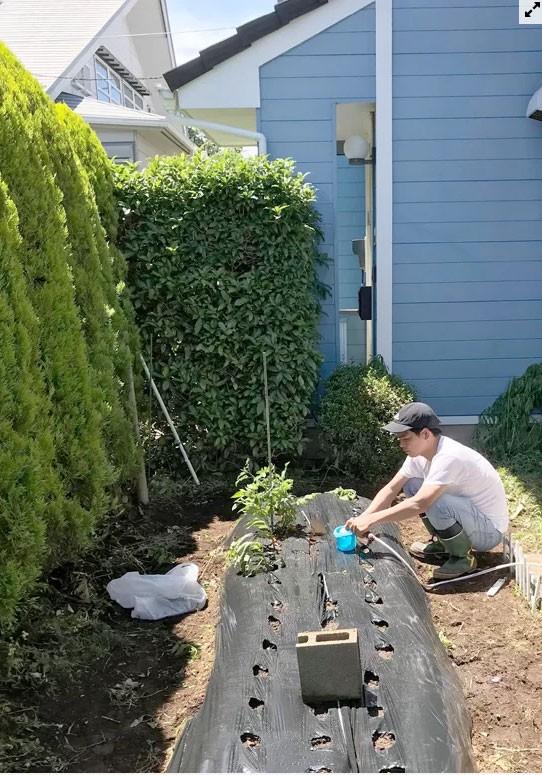 Gia đình Phùng Văn Bẩy (kỹ sư tự động hoá, sống ở Tokyo), đã được anh Điển sang tận mảnh vườn trước nhà nhổ cỏ, cải tạo đất và gieo trồng. Nhờ có anh ấy mà nhà tôi giờ chỉ việc hái rau ăn, anh Bẩy, một thành viên hội nông dân chia sẻ.