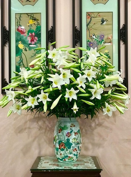 Loài hoa đẹp, rước tài lộc, sức khỏe mùa Vu lan nhưng nhiều người nhầm tên - Ảnh 4.