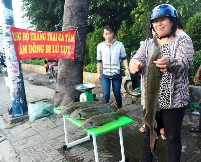 Người TP.HCM đổ xô mua cá tầm 100 ngàn/kg ủng hộ dân vùng lũ - Ảnh 1.