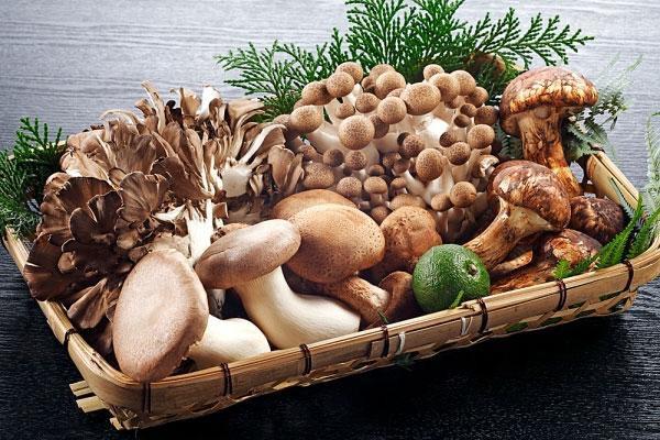 Vì sao các chuyên gia gọi nấm là món ăn của thượng đế? - Ảnh 1.