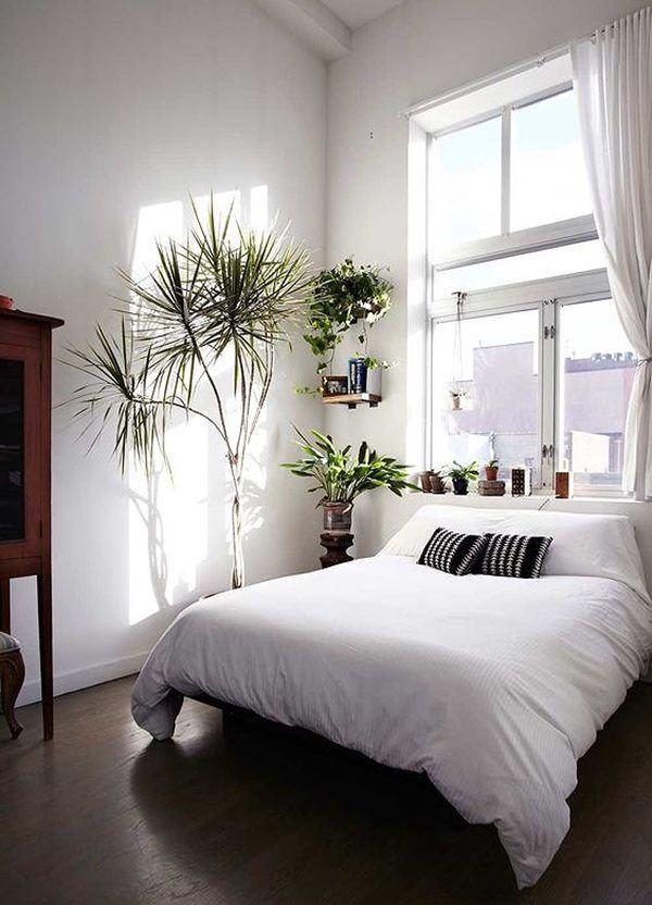Phòng ngủ nổi bật cho nhà phố hẹp nhờ biến tấu cổ điển và cây xanh - Ảnh 8.