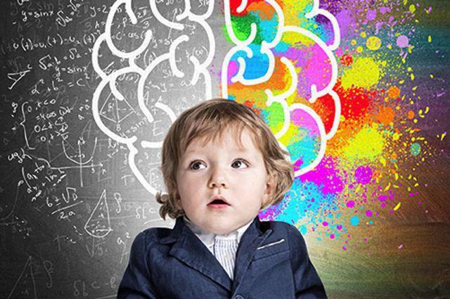 Có một đứa con thông minh, đây là những điều bạn nên và không nên làm - Ảnh 1.