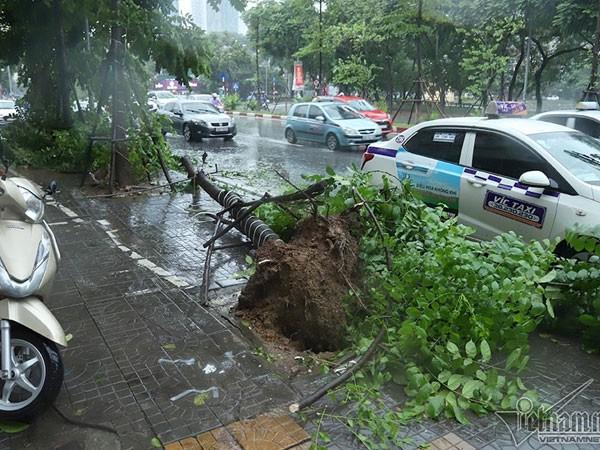 Dự báo thời tiết 4/8, Hà Nội mưa gió mịt mù - Ảnh 1.