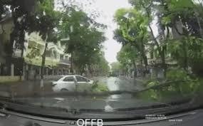 Hành động đẹp sau cơn bão khủng khiếp làm ấm lòng triệu người đang chịu mưa gió - Ảnh 5.