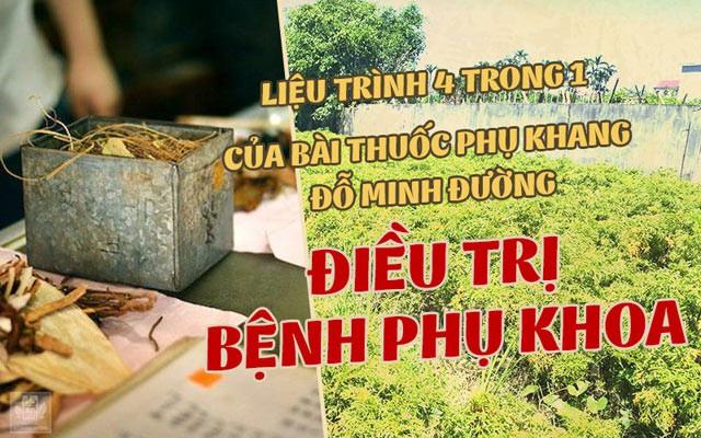 Nhà thuốc Đỗ Minh Đường chữa bệnh phụ khoa - Địa chỉ uy tín cho chị em - Ảnh 4.
