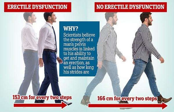 Thấy chồng bước đi kiểu này, các chị cần nhắc anh nhà tập thể dục ngay kẻo mắc rối loạn cương dương - Ảnh 2.