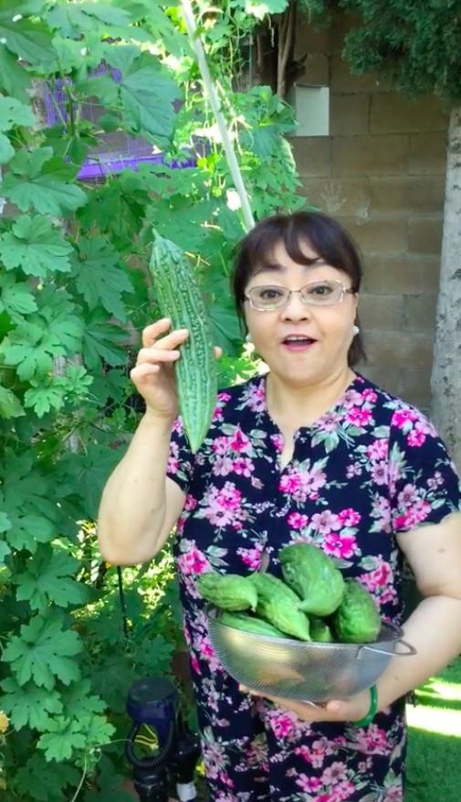 Khu vườn xum xuê cây trái trong căn nhà ở Mỹ của nữ danh ca có chồng làm kỹ sư cơ khí hàng không - Ảnh 7.