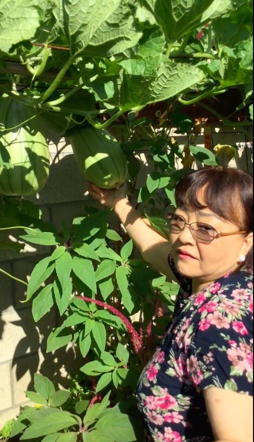 Khu vườn xum xuê cây trái trong căn nhà ở Mỹ của nữ danh ca có chồng làm kỹ sư cơ khí hàng không - Ảnh 9.