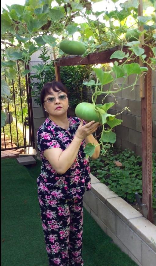 Khu vườn xum xuê cây trái trong căn nhà ở Mỹ của nữ danh ca có chồng làm kỹ sư cơ khí hàng không - Ảnh 10.