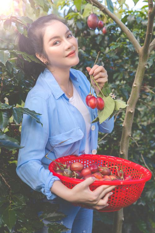 Lý Nhã Kỳ thu hoạch cà chua - Ảnh 4.