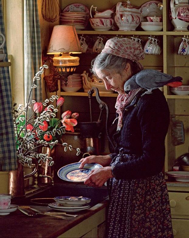 Cuộc sống an yên của cụ bà 92 tuổi bên khu vườn chính mình tự tay trồng hoa, rau quả ở vùng thôn quê - Ảnh 8.