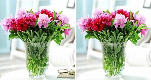 Mẹo giữ hoa tươi cả 7 ngày Tết học lỏm từ chủ cửa hàng hoa - Ảnh 2.
