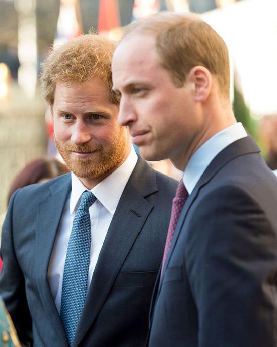 Rạn nứt William - Harry bắt nguồn từ khi bố mẹ ly hôn - Ảnh 2.