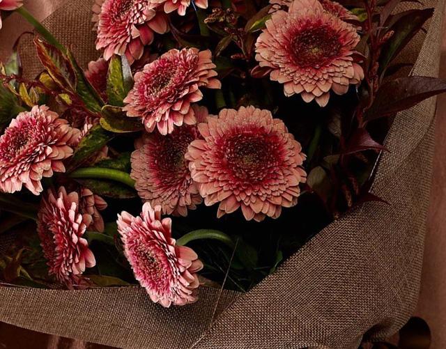 Tặng những loại hoa này đảm bảo vợ, bạn gái cũng phải ngỡ ngàng vì lạ - Ảnh 3.