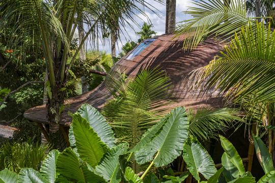 Ngôi nhà trên cây đẹp đến mức ai cũng ước ao ghé thăm - Ảnh 2.