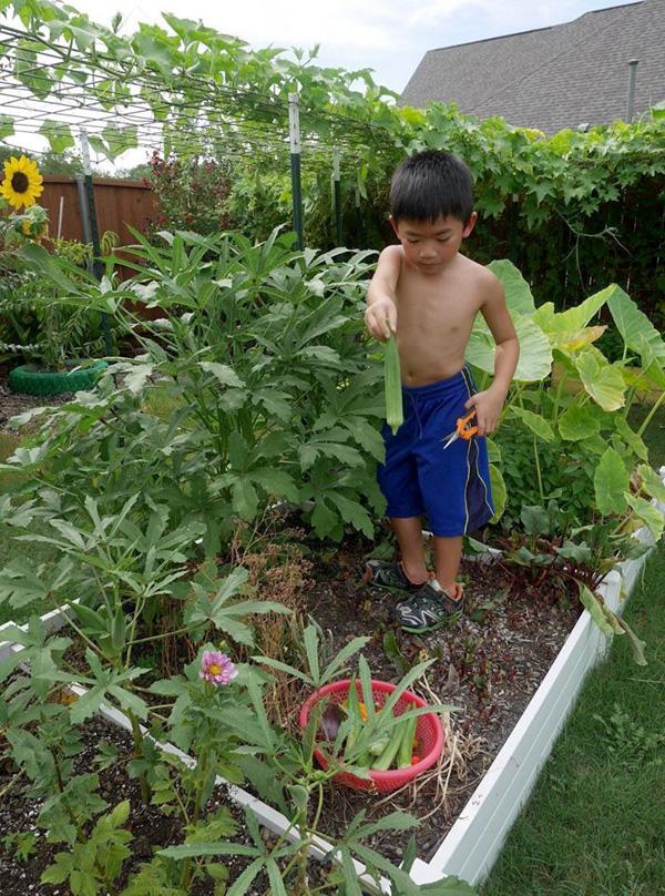 Con gái tặng mẹ vườn rau Việt trên đất Mỹ  - Ảnh 10.