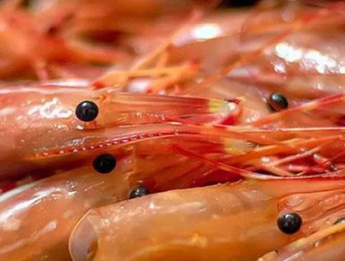 Những sai lầm khi ăn tôm có thể gây hại tới sức khỏe - Ảnh 15.