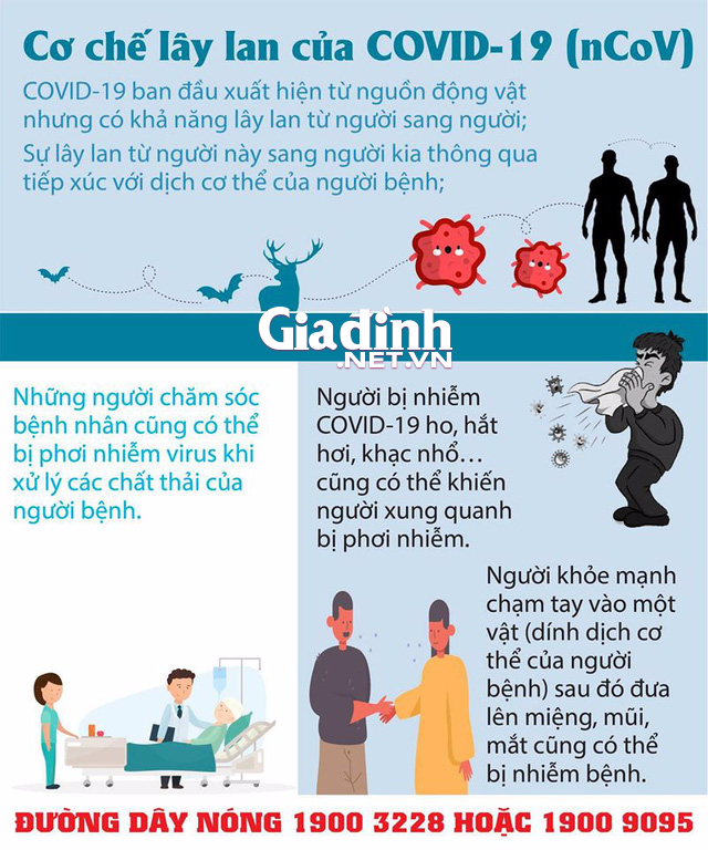 Tung tin người đàn ông quê Hải Dương nhiễm COVID-19, một  phụ nữ bị phạt 10 triệu đồng - Ảnh 4.