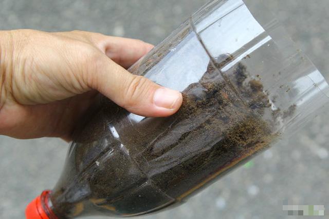 Tận dụng vỏ chai nước ngọt làm thành khu vườn khiến ai cũng mê mẩn - Ảnh 4.