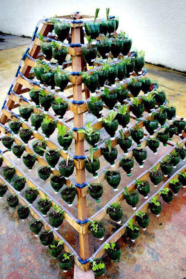 Tận dụng vỏ chai nước ngọt làm thành khu vườn khiến ai cũng mê mẩn - Ảnh 14.