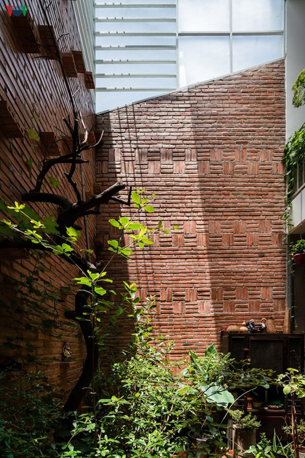 Ngôi nhà phố 2 tầng nằm trong ngõ có điểm nhấn là khoảng sân sau xanh mát - Ảnh 11.