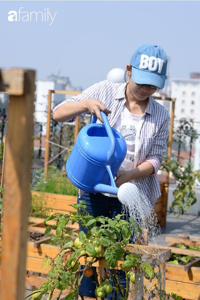 Chuyên gia trong lĩnh vực nhà vườn tại Hà Nội chia sẻ cách trồng rau đúng cách, đảm bảo nhà phố thoải mái rau sạch cho cả gia đình - Ảnh 12.