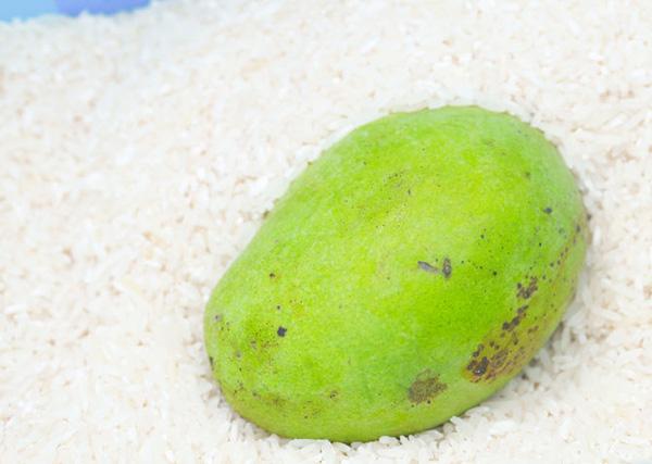Cho quả xoài vào trong thùng gạo, mẹo hay từ xưa mà chưa chắc chị em thời nay đã biết - Ảnh 2.