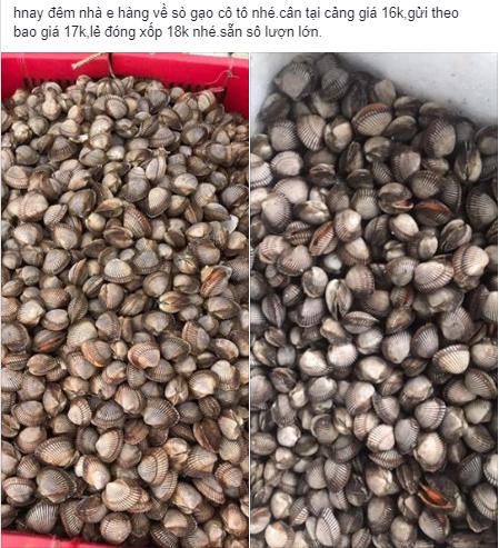 Sò gạo giá rẻ sập sàn chỉ 17.000 đồng/kg được bán đầy trên chợ mạng - Ảnh 1.