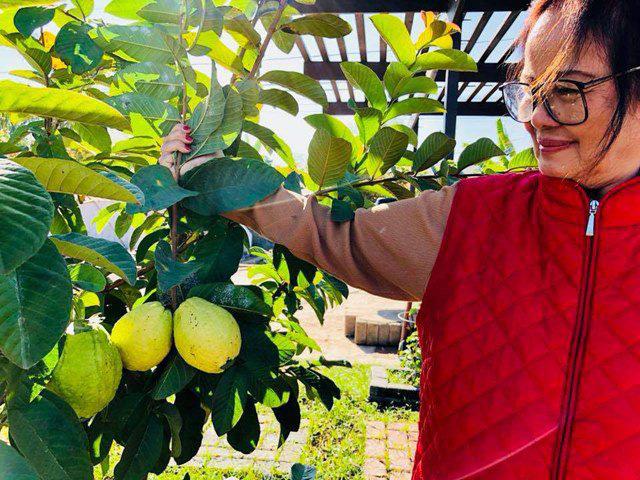 Bằng Kiều không đi hát chỉ ở nhà làm công việc đồng áng như một nông dân thực thụ - Ảnh 9.