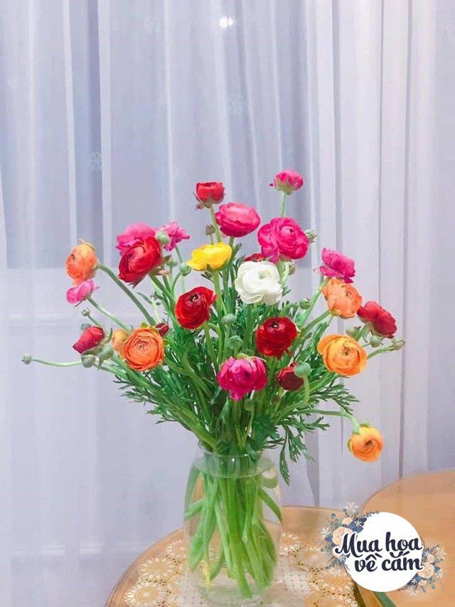 """Muôn kiểu cắm hoa mao lương đẹp """"không đụng hàng"""", nhà mẹ Việt rực sắc đón ngày 8/3 - Ảnh 3."""