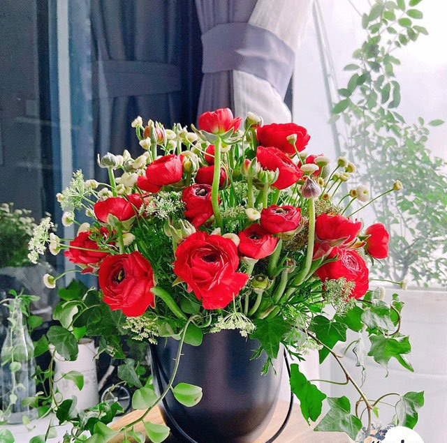 Trong khi giá hoa đang rớt thê thảm thì đây là loài hoa duy nhất hút khách rần rần dịp 8/3 - Ảnh 2.