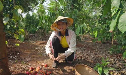 Hoa hậu HHen Niê mải mê thu hoạch rau trái trong vườn, rẫy - Ảnh 12.