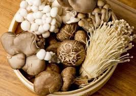 Ăn nấm kiểu này sẽ thành độc chất trên bàn ăn, nhưng nhiều người không biết - Ảnh 1.