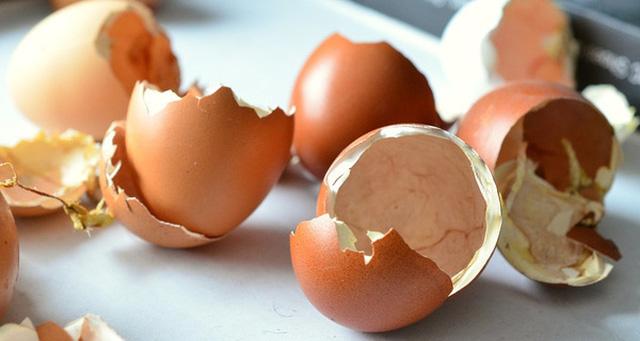 Biết được 5 công dụng này của vỏ trứng bạn sẽ không nỡ vứt chúng đi nữa - Ảnh 2.