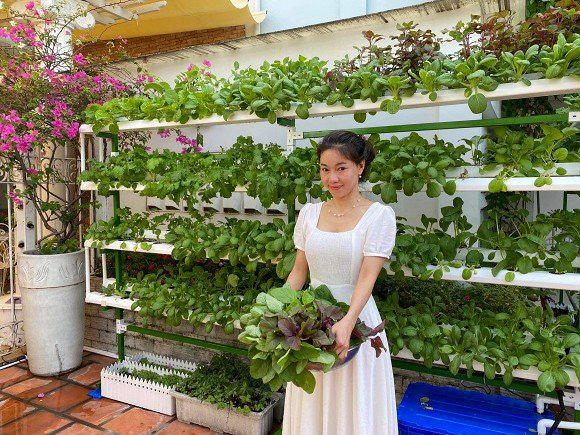Khám phá vườn rau sạch của vợ chồng đạo diễn của các Hoa hậu Hoàng Nhật Nam - Ảnh 2.