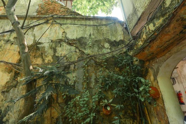 Biệt thự vườn rộng 700m2 của đại gia kim hoàn phố cổ Hà Nội một thời - Ảnh 4.