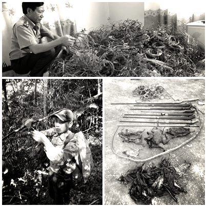 Đội đặc nhiệm núi rừng duy nhất trên cả nước ở Nghệ An - Ảnh 6.